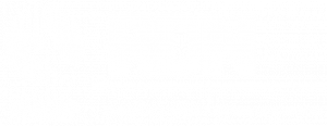 RDN_logo_WIT_800px